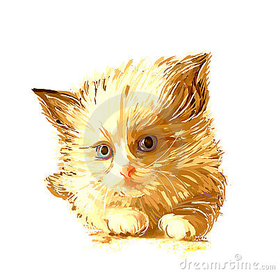 portrait of the ginger kitten with blue eyes