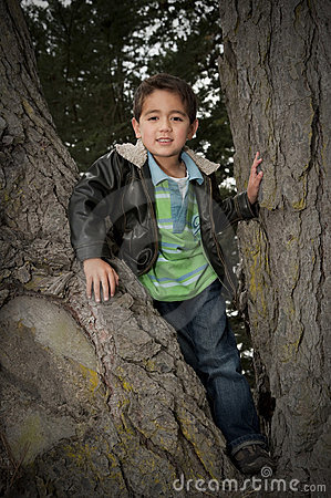 Portrait of little boy siting in tree