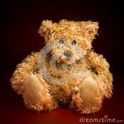 Free Portrait Of A Fluffy Teddy Bear Royalty Free Stock Photography - 46950757