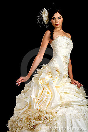 Free Portrait Of The Beautiful Bride In Wedding Dress Stock Images - 20803584