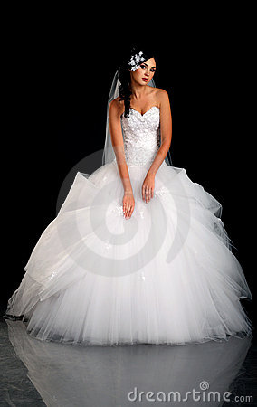 Free Portrait Of The Beautiful Bride In Wedding Dress Stock Image - 20803591