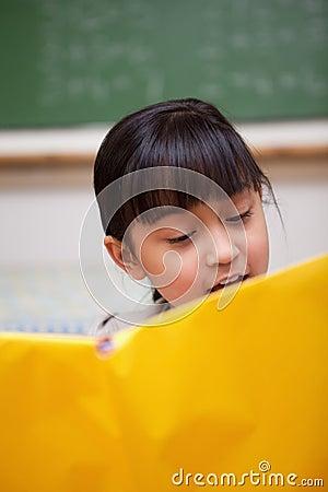 Portrait of a schoolgirl reading