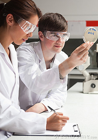 Portrait of serious students in science looking