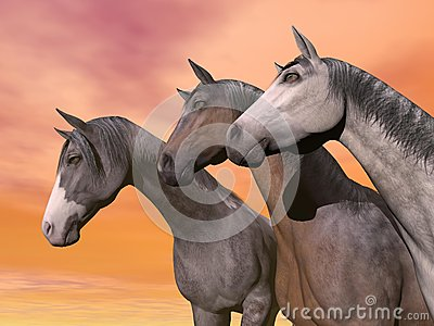 Portrait of three horses - 3D render