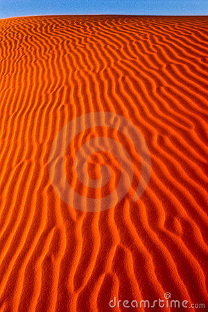 Portrait of a wind rippled dune