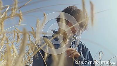 Portret bevallige jonge vrouw met kort haar in jeansjasje die zich op het tarwegebied bij zonsopgang bevinden Zekere onbezorgd stock videobeelden