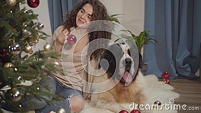 Portret van een mooie caucasiaanse brunette vrouw die kerstboom versiert met haar huisdier Grote hond die op de vloer ligt met stock video