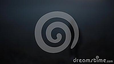 Portret van het Kaukasische meisje weggaan in mist Mooi geheimzinnig wijfje die terug camera en het verdwijnen bekijken stock videobeelden