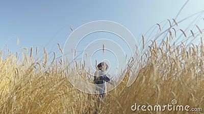 Portret vrij jonge vrouw met kort haar in jeansjasje die zich op het tarwegebied bij zonsopgang bevinden Zekere onbezorgd stock video