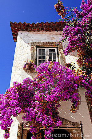 Free Portugal Obidos; A Medieval City Stock Photo - 5879100
