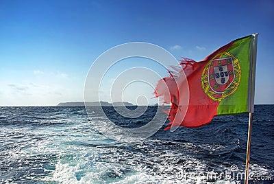 Portuguese flag .