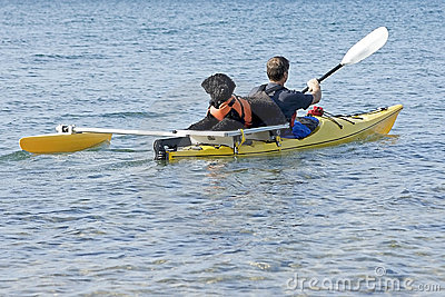 Portuguese Water Dog on Yellow Kayak