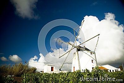 Portuguese Windmill