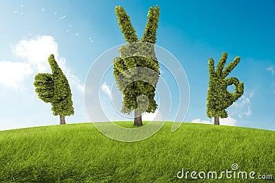 Positive tree