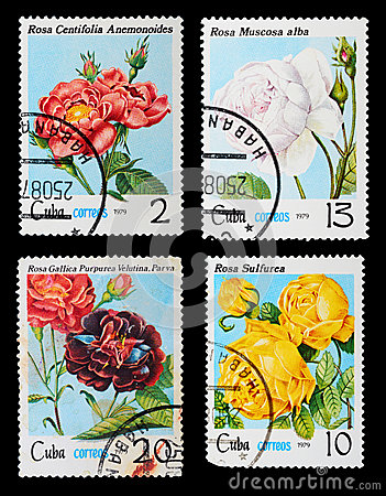 Free Postage Stamp Royalty Free Stock Image - 29031656