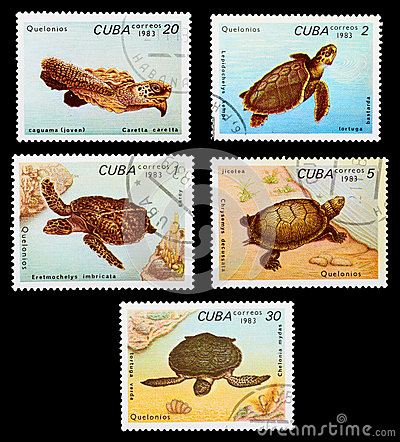 Free Postage Stamp Stock Images - 29031844