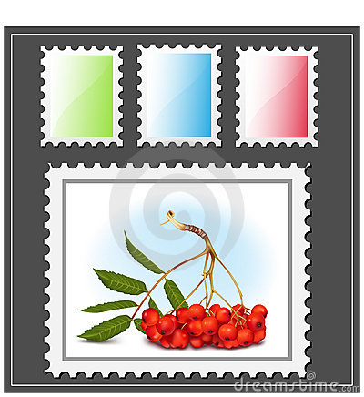 Free Postage Stamp With Ashberry. Stock Photo - 16509440