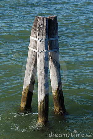 Posts sticking out of water