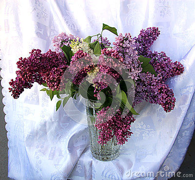 Posy of Purple Lilac
