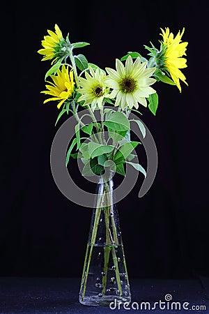 Simple sunflower bouquet in vase