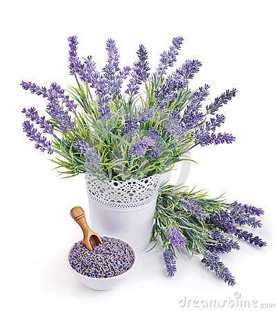 Free Pot Of Lavender And Bowl With Dried Flowers Stock Image - 47008661