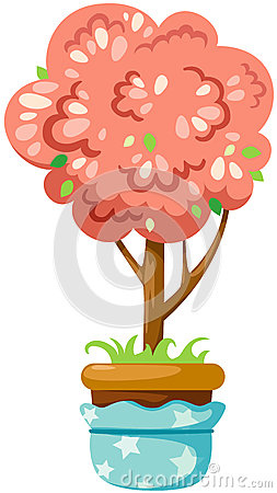 Pot plant
