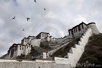 The Potala and Flying Birds