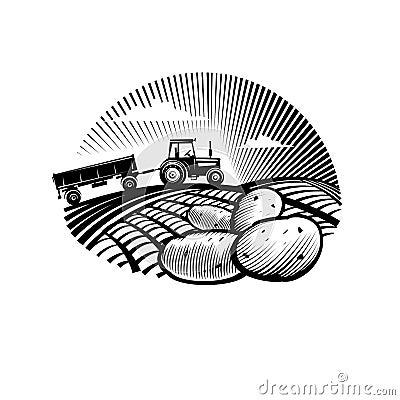 Potato against farm tractor in a field