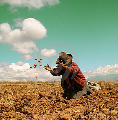 Free Potato Harvest In The Andes Stock Photos - 4130403