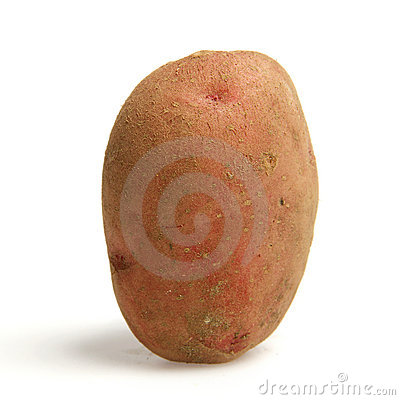 A potato standing upright