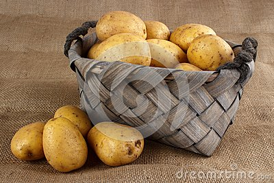 Potatoes in old basket