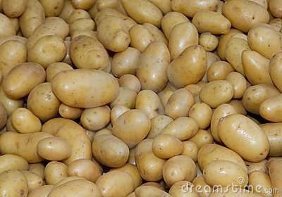 Potatoes raw vegetables food