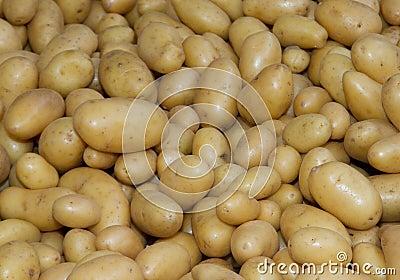 Potatoes raw vegetables food