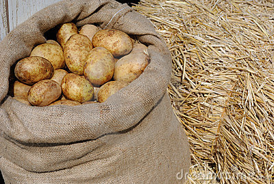 Potatoes in a Sack