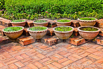 Pots for aquatic plant