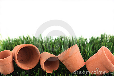 Pots and grass with copy space