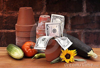 Pots with growing money