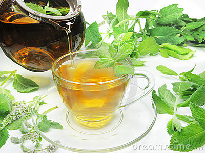 Pouring tea with mint herb