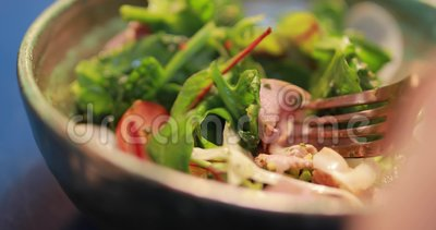 POV, comendo a salada fresca, carne fumado em uma forquilha, vídeo do pato do alimento video estoque