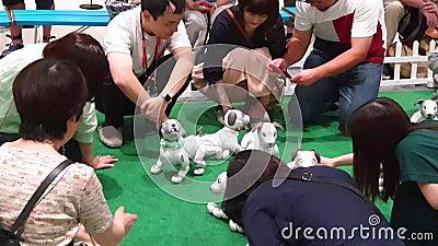 Povos desconhecidos que interagem com os robôs do cão de Sony Aibo em uma sala de exposições de Sony no Tóquio filme
