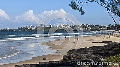 Povos que apreciam uma praia Uncrowded Fotografia Editorial