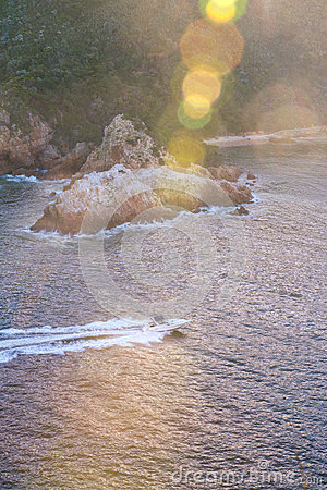 Free Power Boat In The Ocean Royalty Free Stock Photo - 61733055