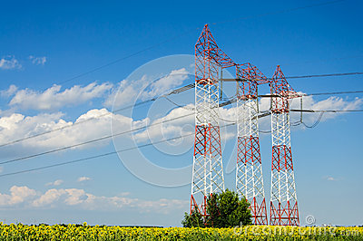 Power grid line