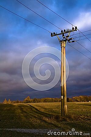 Free Power Line Royalty Free Stock Photos - 7906738