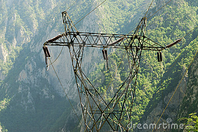 Power transmission line in the wild