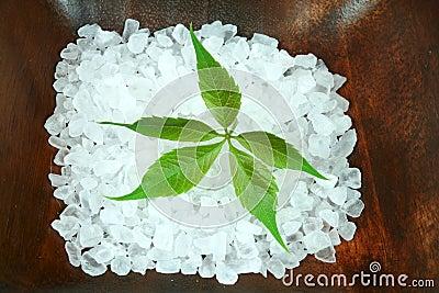 Powerful green leaf in spa