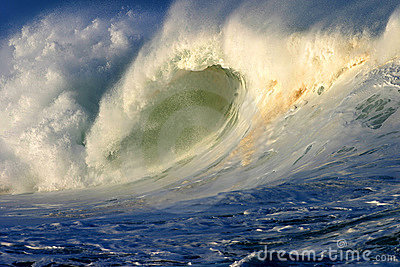 Powerful Surfing Ocean Wave in Hawaii