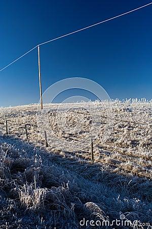 Free Powerline Hoarfrost Stock Photo - 426920