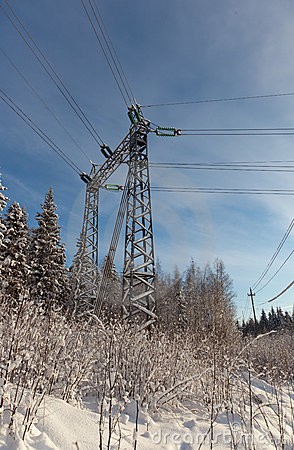 Powerline on a winter forest