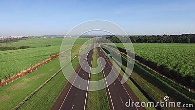 Powietrzny trzciny cukrowa pole w autostradzie Alexandre Balbo w Ribeirao Preto, Brazylia zdjęcie wideo